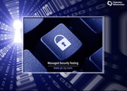 PCI Audit & Assessment Services,  Managed Security Testing- Ya-Cpa
